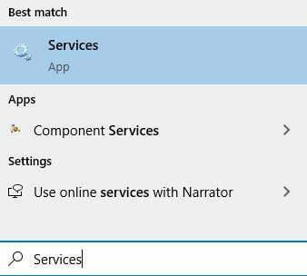 services search box